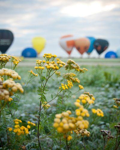 Diana Cherecheș și Kinga Kalmar - Maramures Balloon Fiesta 2013 (13)
